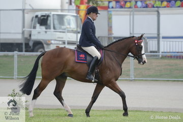 Paul Davidson rode his own, McKell and Kiah Equestrian nomination, 'Jarendan Just Saying' to take third place in the class for Ridden ANSA Mare/Gelding 15-16hh.