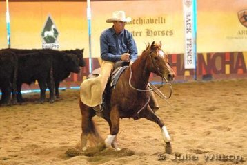 Y'Bar Pixi Play Girl ridden by Joe Gibson scored 142.5 in the 1st Go Round of the EquiPro Derby.