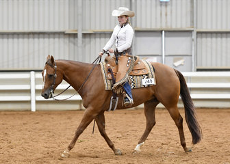 Charlotte Mansley and My Deliberate Breeze in the Youth Ranch Riding.