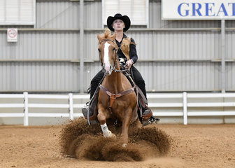 Cuttalenas Little Rooster ridden by Jessica Young in the Junior Horse Reining.
