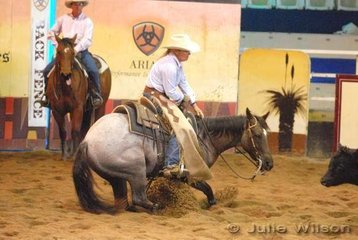 Deb Wilson rode Built Like A Roc to score 120 in the 1st Go Round of the EquiPro Derby.