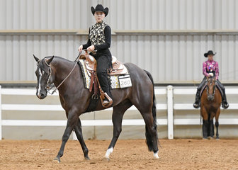 Alexis Gifford riding Tiger By Choice, in the Senior Youth Western Horsemanship 14-18 years.