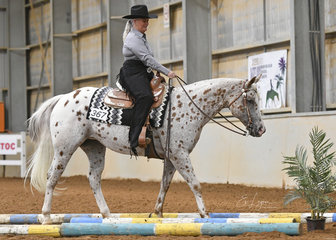 Carol Schwartz riding JNH Totally Sweet in the Novice Amateur Trail