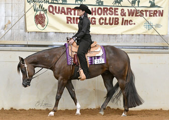 CVS Sure Will, owned by Lisa McGuire and shown by Holly Wilkie in the 3 year and Over Maiden Western Pleasure.
