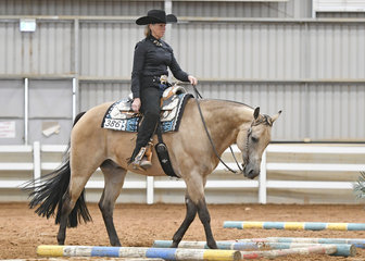 Diane Rose riding Traindibo Intriplechick in the Select Amateur Trail.