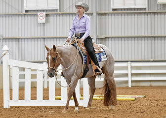 Gill Tangey on Cees Love And Kisses in the Select Amateur Trail.