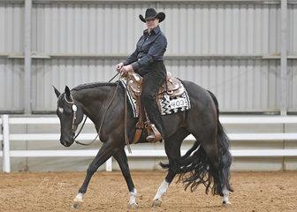 Lynne Van Dyke riding Dark Punk in the Select Amateur Western Horsemanship.