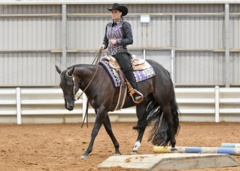 YLS MIlion Dollar Lazy shown by Jade Spicer in the Amateur Senior Horse Trail