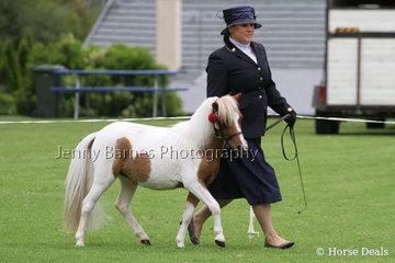 K Coates, Camberley Park Anna Rose