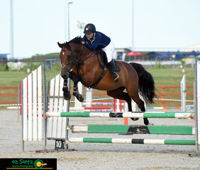 Competing in the Thoroughbred 90cm AM7 round was 'Calbria Fools Gold' ridden by Deanna O'Neil at the Tamworth Indoor Championships.