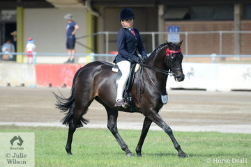 Tex Flack rode Jodi Allen-O'Sullivan's well performed, 'Royalwood Centre Stage' to second place in the class for Child's Hack 15-16hh.