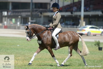 Becky Robertson rode the Wells Family's nomination, 'Bellingara Tribute' to third place in the class for Child's Show Hunter Pony N/E 12hh.