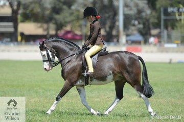 Maison Hunt had a successful show with Andrea Merry's charming, 'Splashdance'. They won the Hunter Leading Rein class yesterday and today they were placed in the class for Child's Show Hunter Pony N/E 12hh.