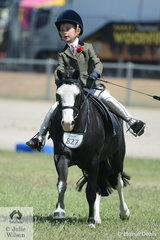 Harrison Galloway-Smith certainly had the measure of Vanessa Galloway-Smith's delightful, 'Bamborough Snigger' during their Child's Show Hunter N/E 12hh.  Harrison and Bamborough Snigger'  produced a very good gallop in their workout.