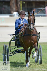Mark Glendenning won the class for Hackney Pony 12.2hh-14hh with his , 'Parkwood Pollyanna'.