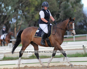"""Jess Wills in the Preliminary 1A Dressage Age Group 30-39 y/o on Saturday riding """"Millwood Shady"""""""