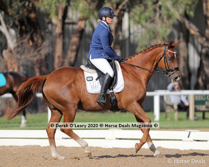 """Christina Brown in the Preliminary 1A Dressage Age Group 50-59 y/o riding """"Thomas"""""""