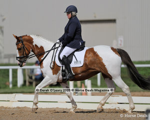 "Fiona McKenzie rode ""Alexander Park Freda"" in the Novice 2A Dressage riders 50-59"