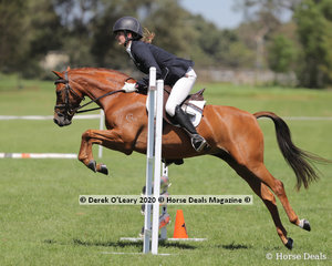 "Stephanie Halligan rode ""Yarralea Love Of Minx"" in the 65cm Showjumping on Sunday age group 30-39 y/o"
