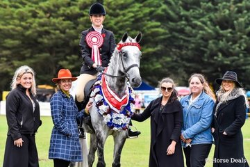 Supreme open ridden exhibit, supreme rider and overall grand champion ridden exhibit sponsored by Release property management Lara and Mal Byrne Saddlery. Sarah Beams (née OConnor) riding Wall Street