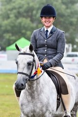 Champion large show hunter pony. Kingsfred Diplomat
