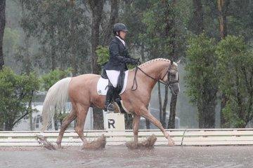 Exavier SSA Australian Reserve Champion Derivative Preliminary Dressage