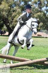 Megan Hodge's,' Flowerdale Top Shot' (Weston Park Tully/F. Fuschia) is pictured during the class for Working Hunter N/E 12hh.