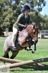 Tiana Morden's, 'Ripple Brook G'Day' (Arielen Nimrod/R.B Nessie) is pictured during the class for Working Hunter N/E 12hh