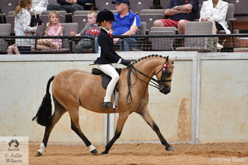 Jessica Sharp rode Tamara Lee's home bred, 'Tamrie Park Lillipop' (Nawarrah Park Bentleigh/Springvale Denim n Lace) to take second place in the class for Ridden Part Welsh N/E 12.2hh.