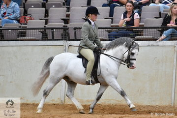 Lauren Farquhar rode her stallion, 'Torlyn Caraway' (Nattai Calypso/N.Caraid) to win the Imperial Stud class for Ridden Section A Mare/Gelding/Stallion. The Gary le Brocq bred pony went on to to be declared the Mosman Park Stud 2020 Champion Ridden Welsh at the Australian Welsh and Part Welsh Ridden Championship Final, winning $5000 prize money.