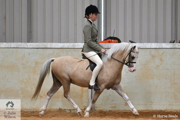 Emma McCallum rode the Ripple Brook Stud's, 'Imperial Baroque' (Imperial Castaway/I Bewitched) to fourth place in the class for Ridden Section A at the Australian Welsh and Part Welsh Ridden Championship Final.