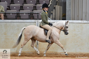 Scarlett Porter is pictured aboard her own and Ashley Porter's home bred, 'Vanoca Park Puzzle Book' (Dalgangle Limelight/V.P. Picture Book) during the strong class for Ridden Section A Mare/Gelding/Stallion.