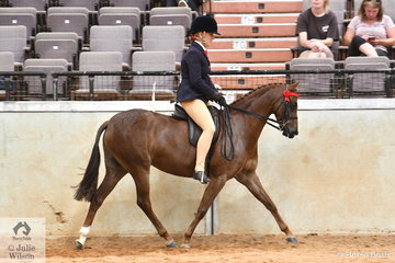Sueanne Vale rode Jan Langley's, 'Langtree Finale' by Langtree Destiny out of the well performed UK import, Padrig Flowergirl, to win the Hanns Transport class for Ridden Part Welsh 12.2-13.2hh and went on to be declared Runner Up Ridden Part Welsh and take home the $1000 prize money.