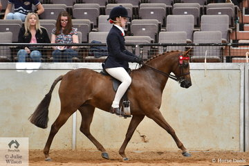 Cassandra Fasan-Jones rode her, 'Kyandra Picturesque' (Turberry Tom Kitten imp UK/Imperial Flash Time) to take fourth place in the Hanns Horse Transport  class for Ridden Part Welsh 12.2-13.2hh.