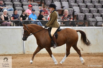 Caroline Purcell rode the Heffernan and Purcell nomination, 'Nawarrah Park Astro Boy' (Synod Aristocrat imp UK/Endymion Allison) to take second place in the Torlyn Stud class for Ridden Section C Mare/Gelding/Stallion.