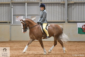 Narelle Harty's, 'Pen-nant Welsh Dragon' (Barnon Beau Gambler/Hazelmere Wynne) to third place in the Dalbrae Stud class for Ridden Section D.