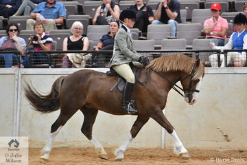 Lauren Farquhar had a successful day at the 2020 Australian Welsh and Part Welsh Ridden Championships and is pictured aboard Judy  Appleton's, 'Pen-Nant Firecracker' (Machno Rhys imp UK/Pen-Nant Gay Girl) that won the Dalbrae Stud class for Ridden Section D Mare/Gelding/Stallion.
