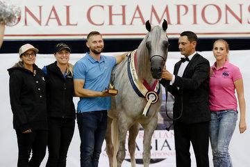 Klassical Fame MI Australian Champion Purebred Mare  for G J & J Farrell