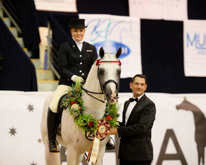 Aamahni for Parkview Arabians winning the Ultra Arabian Award