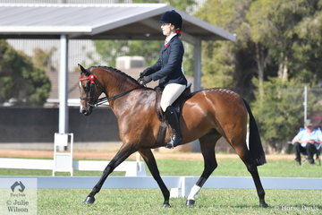 Tatura local, Brylee Tompson has had a super weekend with Kaye Thomson's, 'Bremala Miss Victoria' (Sarnau Victory/ Helden Miss Elite). Winner last night and today claimed the Supreme Led Part Bred Welsh Exhibit and Champion Ridden Partbred awards.