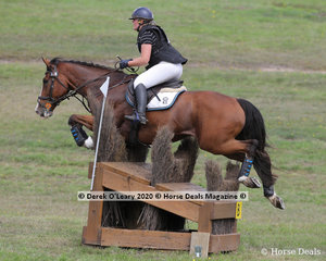 """Lucy Petersen placed 2nd in the CCI2*-S riding """"Ask No More"""" with a fnal score of 48.70"""