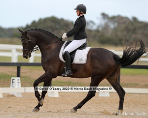 """""""Valyrian Fire"""" ridden by Fiona Schilg in the Preliminary 1A on Saturday"""