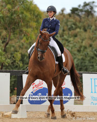 """Hayley Gilbert rode """"Sugarloaf Rubinell"""" placing 2nd in the FEI Inter 1 and 3rd in the Prix St George"""
