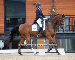 """Caitlyn Porter rode """"Neversfelde Wilfred"""" placing 6th in the Prix St George with a score of 63.235%"""