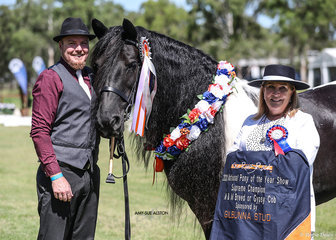 Champion Part Bred Gypsy & Supreme Champion Mountain & Moorlands Breed or Gypsy Cob Rosedale Tasha, exhibited by Maria Pullen, pictured here with Maria's son and NSW Judge Kerry Patchett.