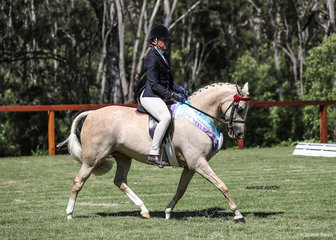 Runner Up Ridden Part Welsh Pony of the Year Allira Park Paspaley, exhibited by Kirsten Strath.