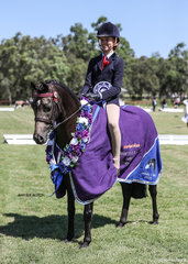 Champion Ridden Part Welsh Pony of the Year Brynlee Fine by Me, exhibited by Maree Garret.