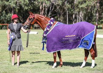 Led Australian Saddle Pony of the Year Saradale Secret Treasure, exhibited by M & J De Rooy.