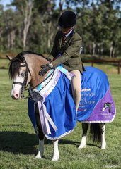 Runner-up Champion Ridden Welsh Pony was Sarah Withers Pant-Y-Ffynon Cappuccino.