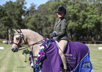 Ridden Australian Pony of the Year Canyon Saloman, owned by Skylea Lavers.
